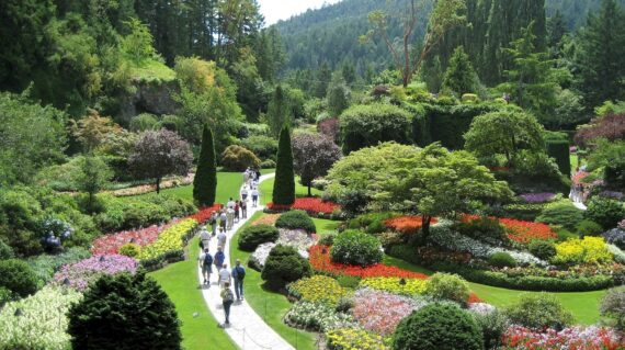 Butchart Gardens is a National Historic Site, and a stunning depiction of flora as art