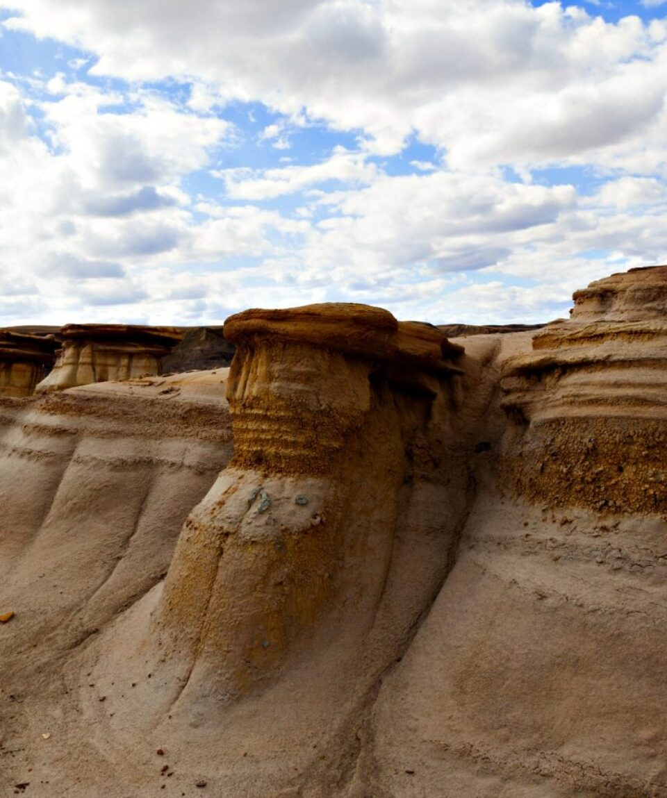 Drumheller Badlands at the Dinosaur Provincial Park in Alberta are rich deposits of fossils and dinosaur bones have been found.