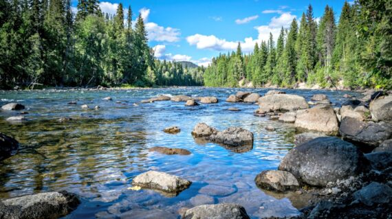 Murtle River in Wells Gray Provincial Park