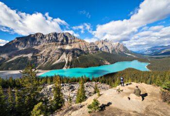 Peyto Lake near Banff National Park