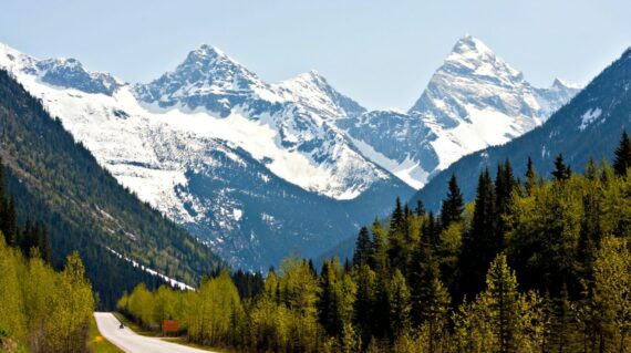 Rogers Pass in the Canadian Rockies - new foliage on the trees against a backdrop of snow-capped mountain peaks