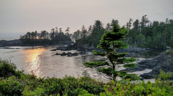 The Wild Pacific Trail located in Ucluelet with the rugged cliffs and shoreline of the westcoast of Vancouver Island